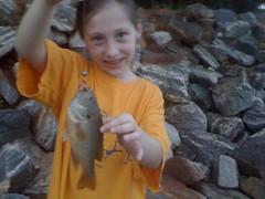 Iz's Fish