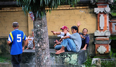 Happy Locals Relaxing (cwgoodroe) Tags: summer bali dog gambling colors clouds reflections indonesia duck fight tour rice culture palm padi betting patties cockfight ubud chiken paddies sate batubulan