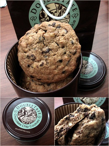 doubletree by hilton - chocolate chip cookie