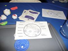 P1000040 (fairyshaman) Tags: makerfaire2009