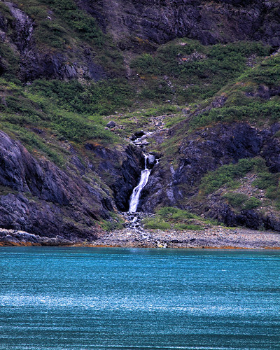 8x10 Glacier Bay NPIMG_0542