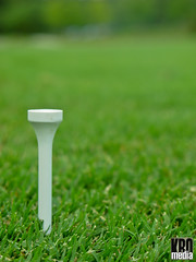 This is a Golf Tee