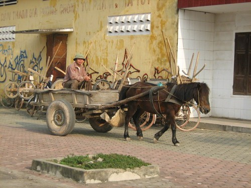 Horsecart in Ha Tinh