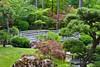 Japanese Garden (jimgspokane) Tags: gardens japanesegardens spokanewashington onlythebestare naturewatcher