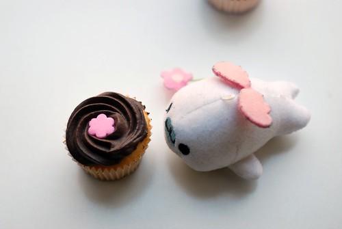 Mamegoma & cupcake
