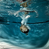 283:365 - Cannonball (Caleb Kerr) Tags: portrait water underwater einstein bubbles swimmingpool 365 splash submerged alienbee liquid waterproof plm deepend cannonball scubagear project365 frozenmotion waterripples strobist frozenaction e640 paulcbuff canon5dmk2 aquaticaunderwaterhousing paraboliclightmodifier