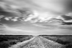 path (nicola tramarin) Tags: longexposure bw italy italia path delta sentiero biancoenero veneto rovigo lungaesposizione scardovari polesine nicolatramarin