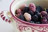mulberries (ion-bogdan dumitrescu) Tags: summer fruits childhood fruit child sunny bowl fresh dude ruby ripe mulberry mulberries dud bitzi morusalba morusnigra ibdp mg4460 ibdpro wwwibdpro ionbogdandumitrescuphotography