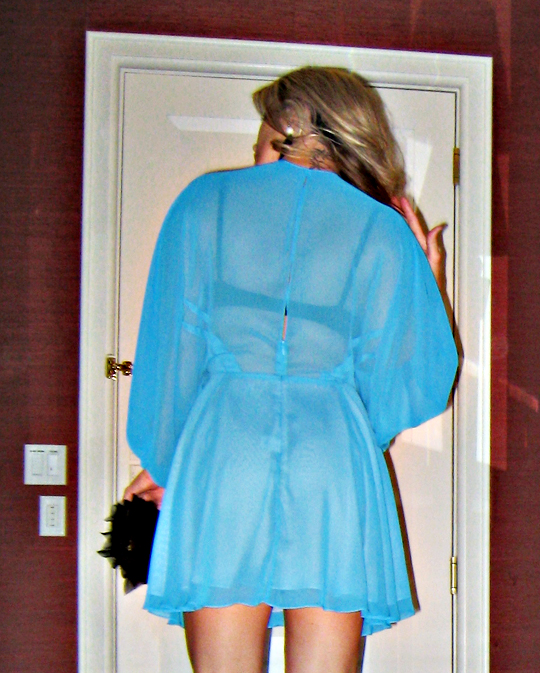 back of sheer mara hoffman blue mini dress