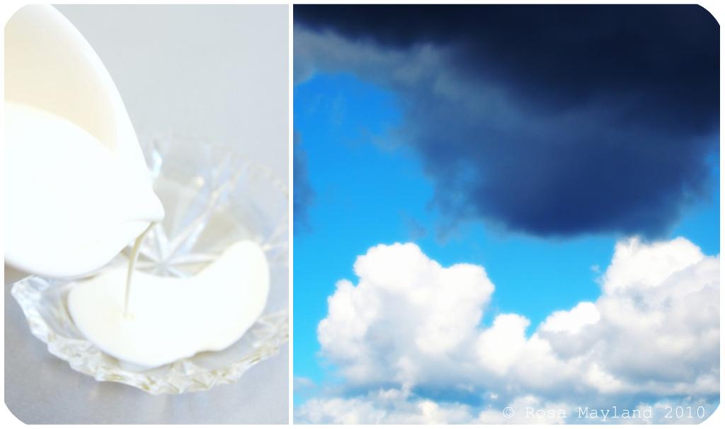 Seaweed Picnik collage 6 bis