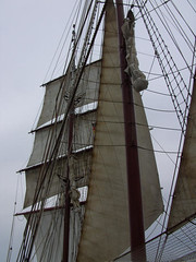 Hanse Sail Atlantis Segel