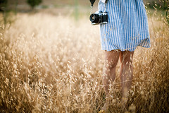 fields of wildness (jasfitz) Tags: california camera wild woman sunlight girl field soft glow dress sandiego bokeh dusk exploring magic explore cotton oats frontpage prickly 50mm12 striped escondido photohunting 5dmarkii