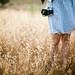 fields of wildness by jasfitz