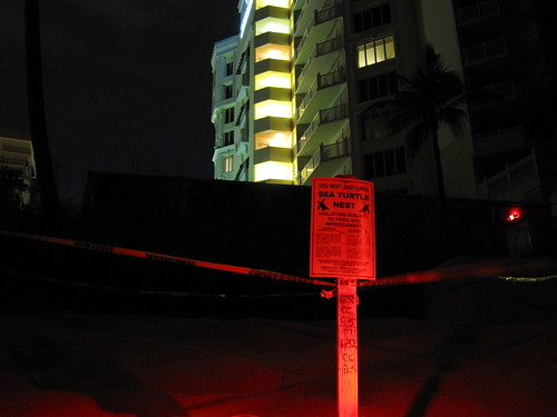 N. Ft. Lauderdale Sea Turtle Lighitng Issues