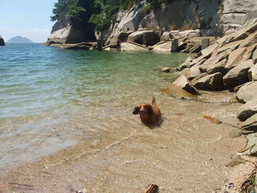 絵の島 広島 写真9