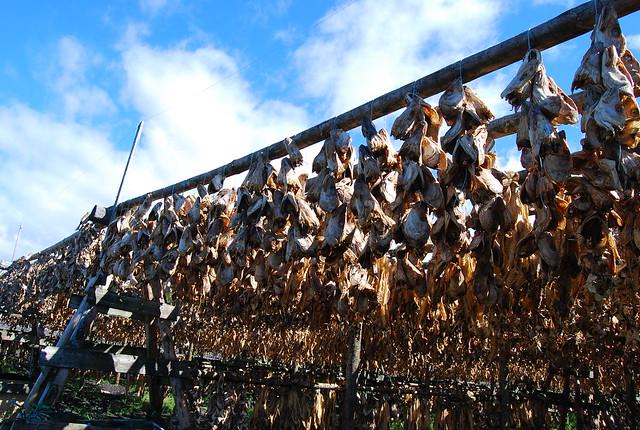 Secadero de pescado