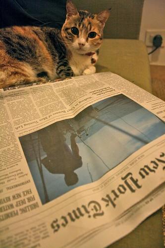 The NY Times Reader