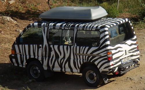 macchina juve (zebra)