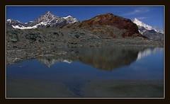 Deep purple (Enriko60) Tags: schweiz switzerland suisse zermatt wallis valais zwitserland oberwallis mattertal abigfave