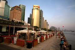 Pudong River Walk 13 (David OMalley) Tags: china city urban skyline architecture modern shanghai future   pudong hitech worldfinancialcenter futuristic jinmaotower orientalpearltower futurist  megacity    shanghaiworldfinancialcenter
