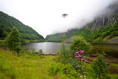 Summer in Norway: Wet and foggy (jensvins) Tags: summer mountains wet rain norway clouds gloomy foggy volda drizzling stigedalen naturethroughthelens shrounding vassosen