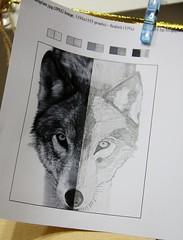 wolf symmetry mine