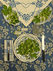 Playing with Hops I (Of Spring and Summer) Tags: life flowers blue stilllife inspiration flower green art texture home glass floral leaves vintage garden photography design leaf antique interior napkin label letters creative knife plate fork retro fabric letter labels romantic plates antiques cottagestyle bluewhite hops tablecloths shabbychic ofspringandsummer prettystems