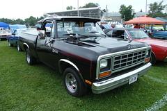 84 Dodge D100 Shortbox (AAR-Cuda340) Tags: car truck plymouth pickup dodge mopar d100 carshow newhamburg moparfest