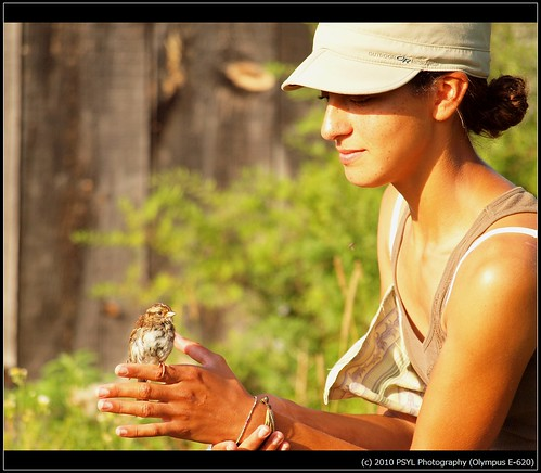 Kat with White-throated Sparrow (Zonotrichia albicollis)