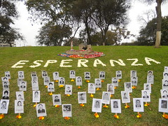 Photos of the disappeared below flowers of hope