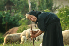 Autumn of Humans (AIeksandra) Tags: woman portrait serbia balkans social photojournalism travel rural sheep optimistic willforlife lustforlife biodynamic aleksandraradonich