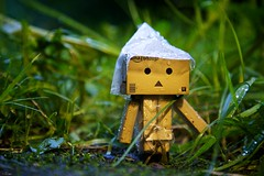 Our long (rainy) walk... (generalstussner) Tags: rain canon adventures raincoat 24105 danbo revoltech danboard 5dmarkii