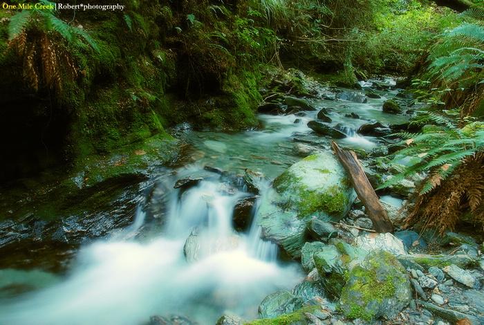 One Mile Creek 05