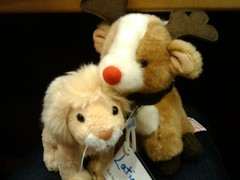 "Latimer ""the buck"" and a lion from BiCon 2008 share a hug"