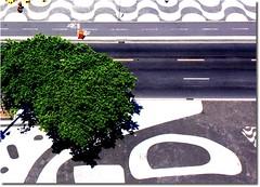 Copacabana, Rio de Janeiro - Brasil (L. Felipe Castro) Tags: brazil rio brasil riodejaneiro photographer rj designer copacabana architect copa fotografo calado arquiteto robertoburlemarx naturalista luizfelipecastro luizfelipedasilvadecastro paisagista