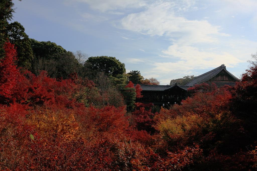 京阪漫遊(預覽版)