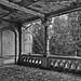 Beelitz-20070712-9265-bw