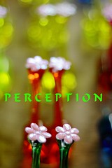 !!~~PERCEPTION~~!! (HamimCHOWDHURY  [Active 01 Feb 2016 ]) Tags: life red portrait blackandwhite white black green nature canon eos colorful faces blu sony surreal dhaka vaio rgb bangladesh dlsr 60d 595036 framebangladesh 791707012011 incrediblebengalperception