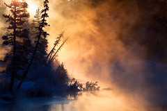 Sunrise at Policeman Creek (Irena Portfolio) Tags: winter fog creek sunrise canmore artbook myst policemancreek