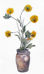 weddingsunflowerz (Ryan Samuel Carr) Tags: watercolor sunflower vase classy