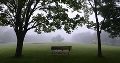 have a seat and watch the fog (Rex Montalban Photography) Tags: rexmontalbanphotography fog bench park jayceepark stcatharines