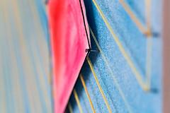 String Kite 3 (fsm vpggru) Tags: macro string art craft kite thread pins