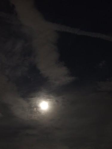 雲掩月_機雲_5