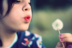 * dry lips (frida in plastic.) Tags: girl blow dandelion