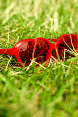 (ion-bogdan dumitrescu) Tags: red sun green love grass canon glasses picnic heart shaped tiltshift bitzi tse90mm tse90mmf28 mg3232 ibdp picnicareala gettyvacation2010 ibdpro wwwibdpro ionbogdandumitrescuphotography
