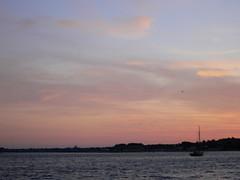 P1050837 (Marina Marcombe) Tags: port pigeons bateaux ponton mouettes plages colombes bouzigues voileslatines tangthau collineste