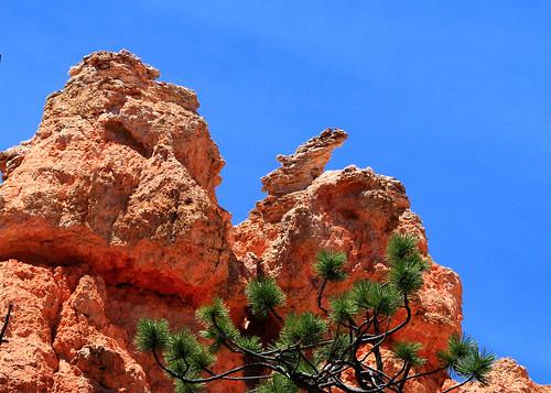 5x7 Bryce Canyon IMG_9532