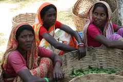 tea worker women waiting (olive witch) Tags: people outdoors day time pov group fem geo sylhet bangladesh 2010 abeerhoque apr10