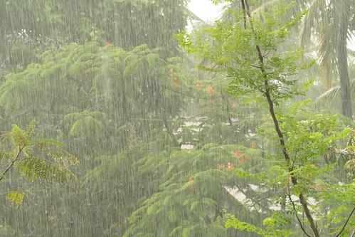 Monsoon..