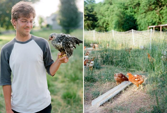 Image of Fletcher's Chicken Farm